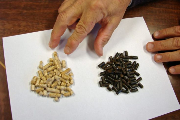 Black wood pellet innovation could see coal takeover
