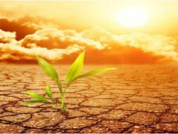 AfDB aid Mauritania to advance climate risk management solutions