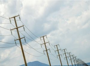 grid electricity